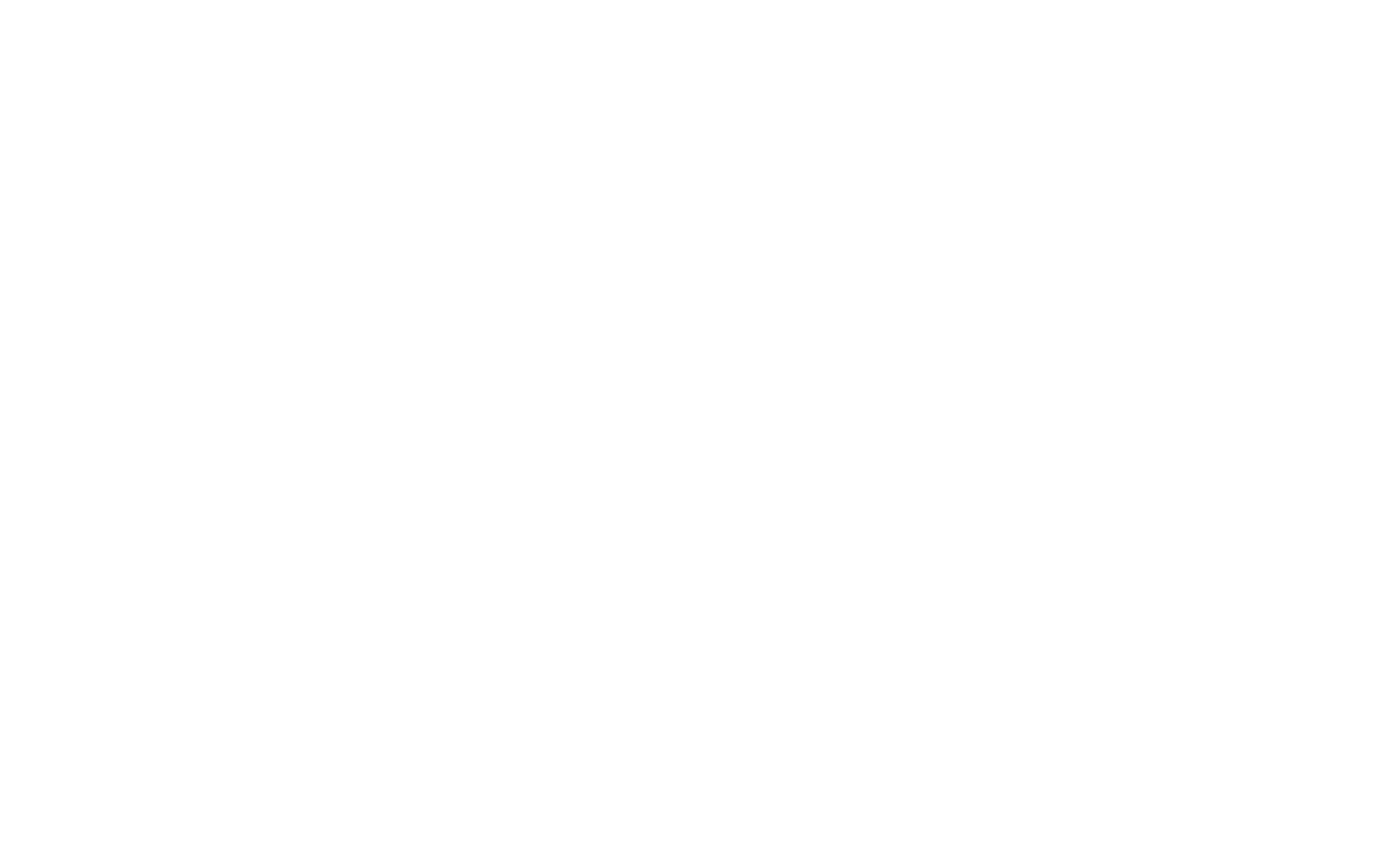 Logo Lorry white